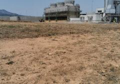 2019 – Powercrop Spa (Società del gruppo Enel) – Assemini (CA) – Servizio di sfalcio erba e potatura piante presso impianto a biomasse di Macchiareddu (CA)