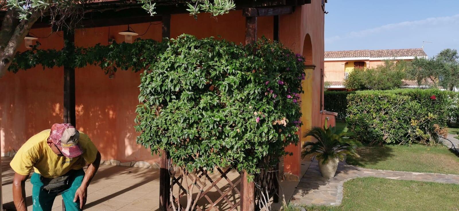 Solemare Case-vacanza Is Potettus - Servizio di giardinaggio18