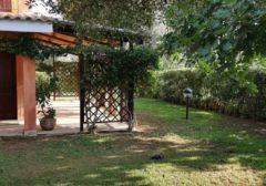 2019 – Solemare Case Vacanza Is Potettus – Sant'Anna Arresi (SU) – Servizio di giardinaggio e potatura piante