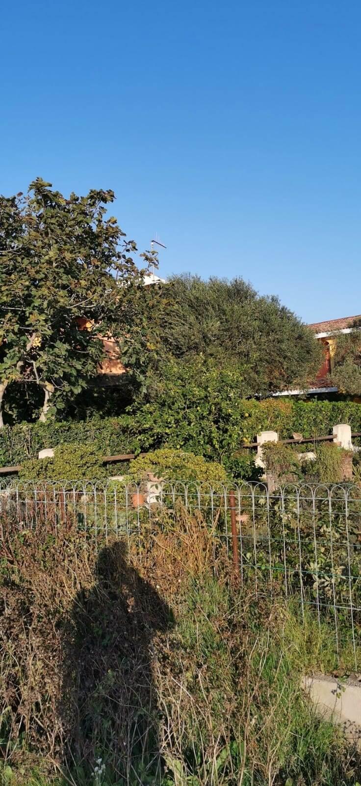 Solemare Case-vacanza Is Potettus - Servizio di giardinaggio3
