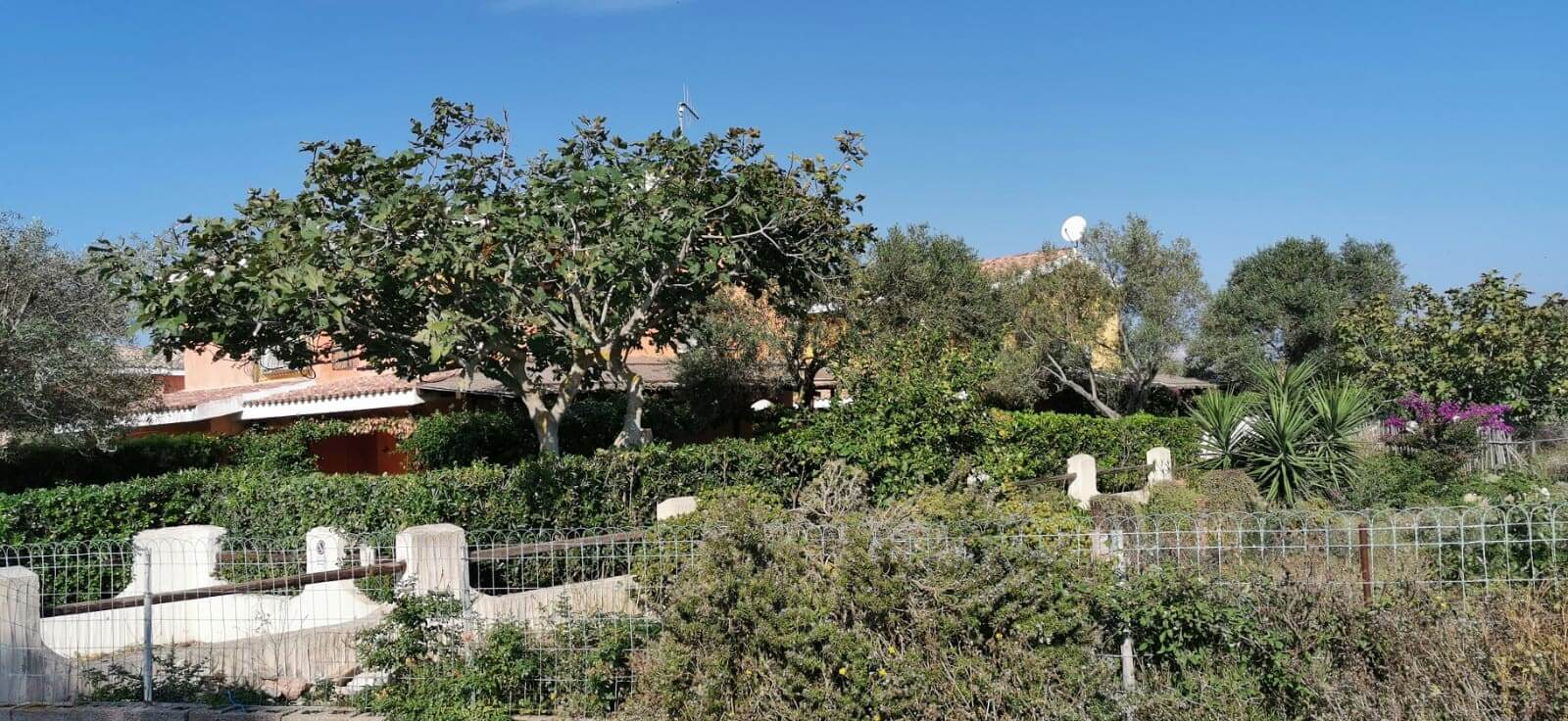 Solemare Case-vacanza Is Potettus - Servizio di giardinaggio5